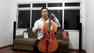 Tempo Perdido - Legião Urbana (Cello Cover)