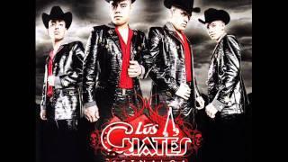 Los Cuates De Sinaloa - La Reina Del Sur