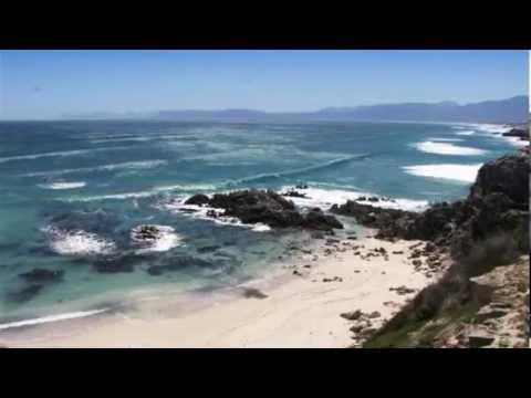 Gansbaai – Western Cape – South Africa