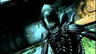 Aliens Vs. Predator 2010 - Xenomorph Sounds