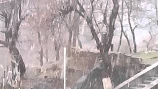 Live Snow fall...  .... 6 feb 2013 at  bonda-sarahan