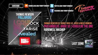 Thomas Newson vs. Avicii - Pallaroid vs. Arise vs. I Could Be The One (Hardwell Mashup)