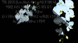 beautiful mess lyrics  video  wmv