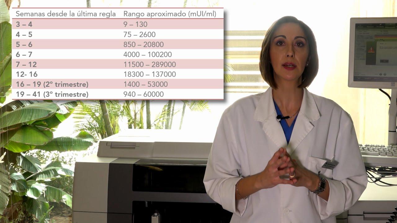 Beta-hCG: interpreting your pregnancy test