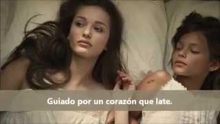 Wake Me Up   Avicii subtitulado en español
