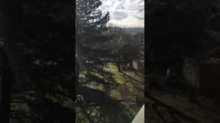 Dia de testar as sirenes na Suíça que são acionadas em caso de guerra, explosão nuclear, incêndio...