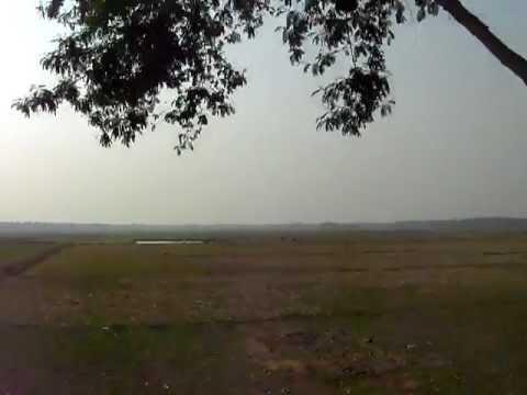 Beanibazar Sylhet scenery