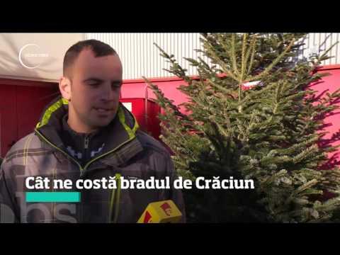Cât ne costă bradul de Crăciun