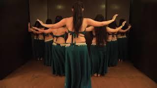 Aao Kabhi haveli pe - belly dance |