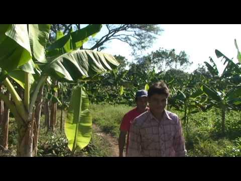 2010 Coffee Delegation, Bainbridge ~ Ometepe Sister Islands Association