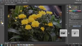 Tự học Video hướng dẫn tự học Photoshop CS6   Bài