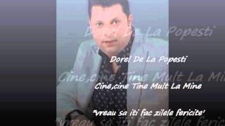DOREL DE LA POPESTI - VREAU SA-TI FAC ZILELE FERICITE (OFICIAL AUDIO)