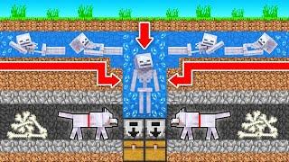 How to BUILD an AUTO Skeleton FARM