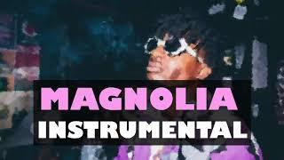 Playboi Carti - Magnolia Instrumental (Prod. Jeffery)