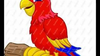 Papagaio Loro