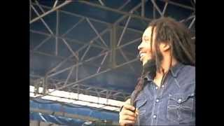 Stephen & Damian Marley - Three Little Birds - 8/2/2008 - Newport Folk Festival (Official)