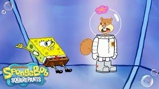 Sandy's Vacation in Ruins 🤖 | SpongeBob