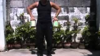 Kung Fu Hand Power Training 2