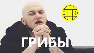 Грибы Тает - Лед. Новая песня. Про Лёд. Группа Грибы