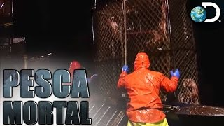 Encerrando a temporada de caranguejos em grande estilo - Pesca Mortal l Discovery Channel