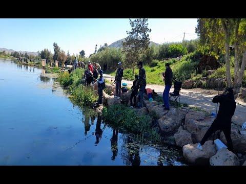 Video : 65 pêcheurs participent à la clôture de la saison de pêche à la truite à Amghass dans l'Atlas