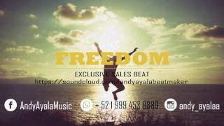 Freedom -  Flute & Guitar Emotional x Beat Instrumental Free (Prod: Andy Ayala)