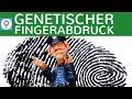 genetischer-fingerabdruck/