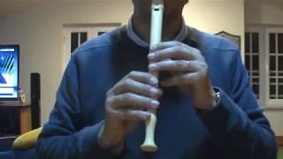 Rei Leão  - Flauta de Bisel -Aula de Música - Frei