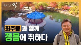 최주봉과 함께하는 전북 정읍 여행(내장산, 우화정) 다시보기