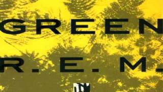 R.E.M. - The Wrong Child