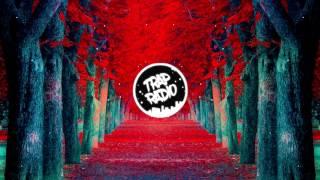 Jon Drake- Backseat Flip (Avstin James/Missingno XE3/Kendrick Lamar)( Tanner Fox/JonVlogs Outro)