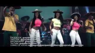 El Rey Guayaba Orquesta Video Oficial