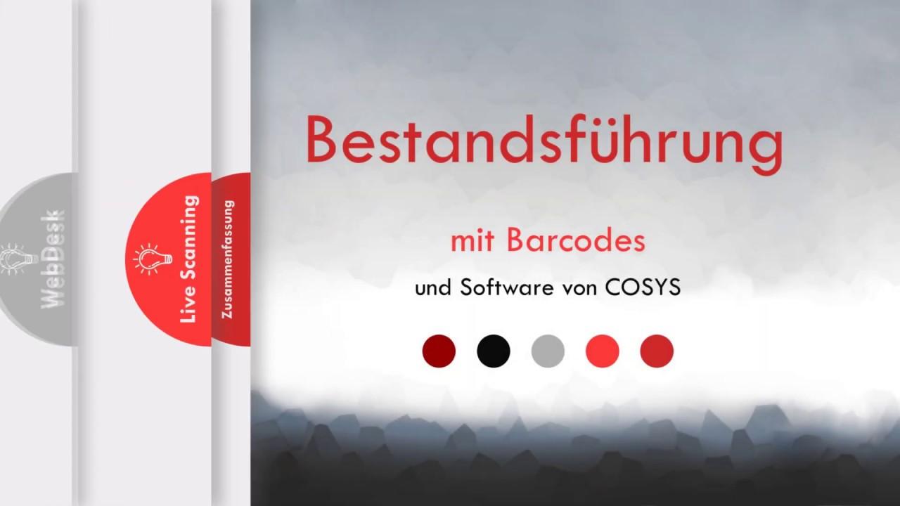 Barcodegestützte Bestandsführung | Cosys Software für Bestandsführung