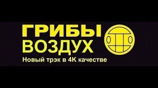 Грибы-Воздух 2017 (official video)