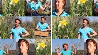 Frederick - Fais-moi une fleur [Clip Officiel]