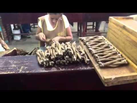 Nicaragua Trip Part 29: Culebras in Action