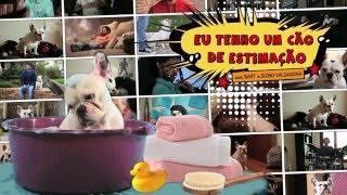 6 - Eu Tenho Um Cão de Estimação - 2ª Temporada