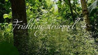 Rhythm of the moon`s Frühlingstrümmel 4 (HD)