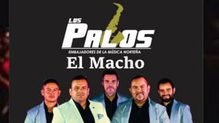 07 El Macho - Grupo Los Palos 2016
