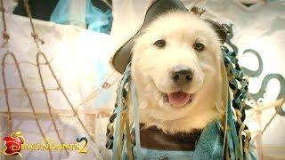 Dogscendants Music Video: It's Going Down 🐶    Descendants 2