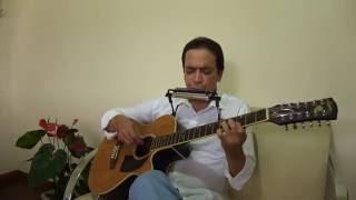 Hallelujah - Aleluia - Solo de violão de 12 & gaita.