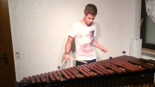 Linkin Park - Castle of Glass Marimba Cover