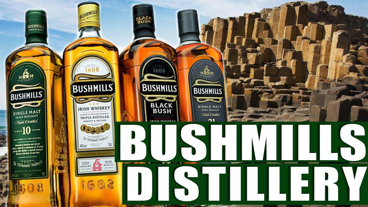 Making Irish Whiskey at Old Bushmills Distillery