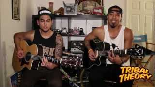 Mr. 2Nite - Tribal Theory - Acoustic