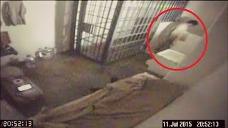 5 Real Prison/Jail Escapes Caught On Camera width=