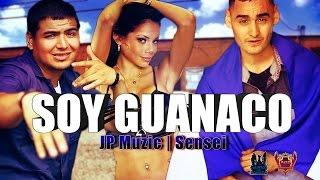 JP Muzic Feat. Sensei - Soy Guanaco - Official Video