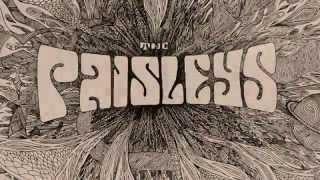 The Paisleys - Cosmic Mind At Play - Sundazed Vinyl