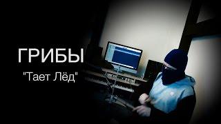 Грибы - Тает лёд (KC_Drums cover)