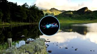 Disciples - They Don't Know (Radio Edit) width=