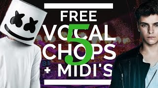 Free EDM Vocal Chops & MIDI FILES!🐻 [EDITION 5]